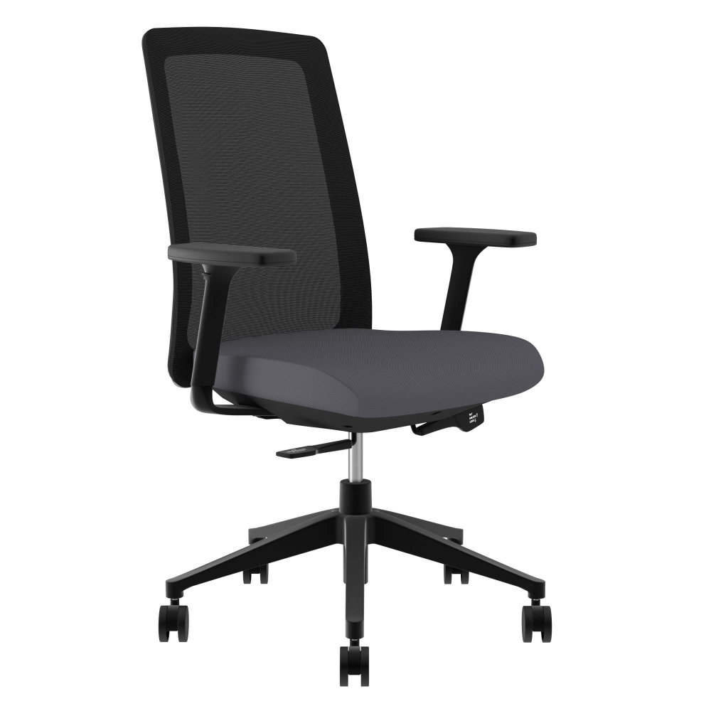 Executive chairs and conference chairs ctm 5000 fx gry