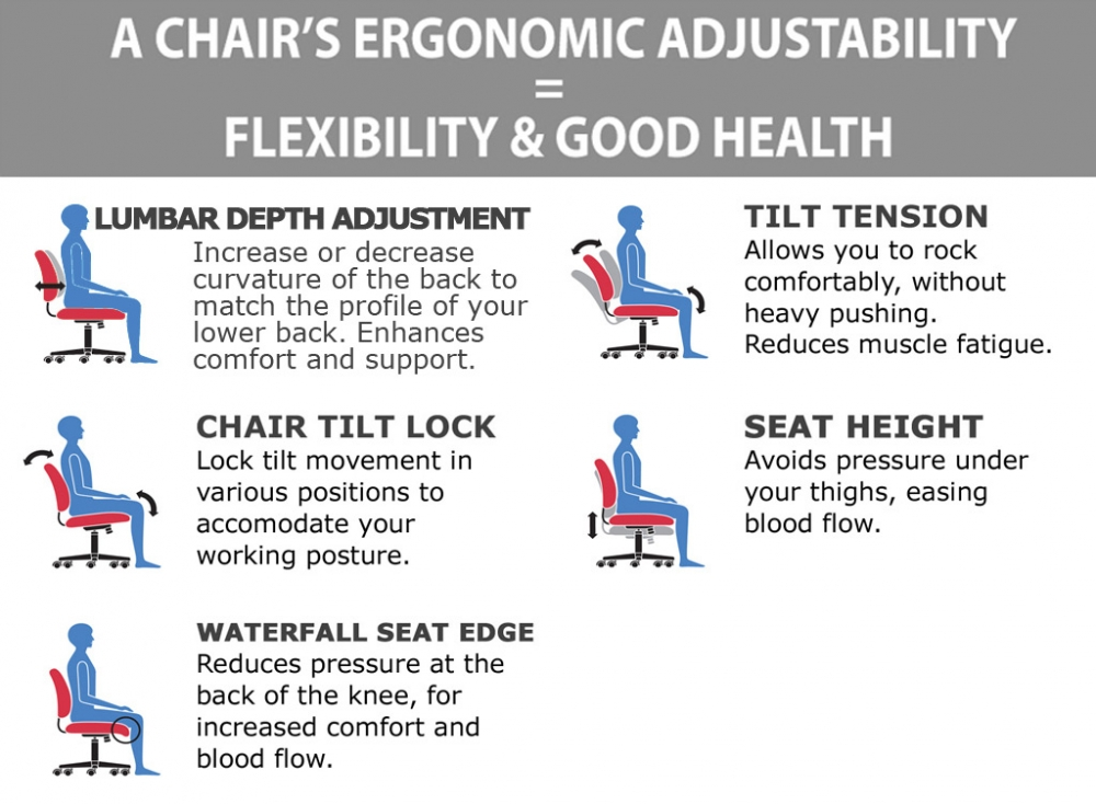 Executive high back office chair ergonomic features