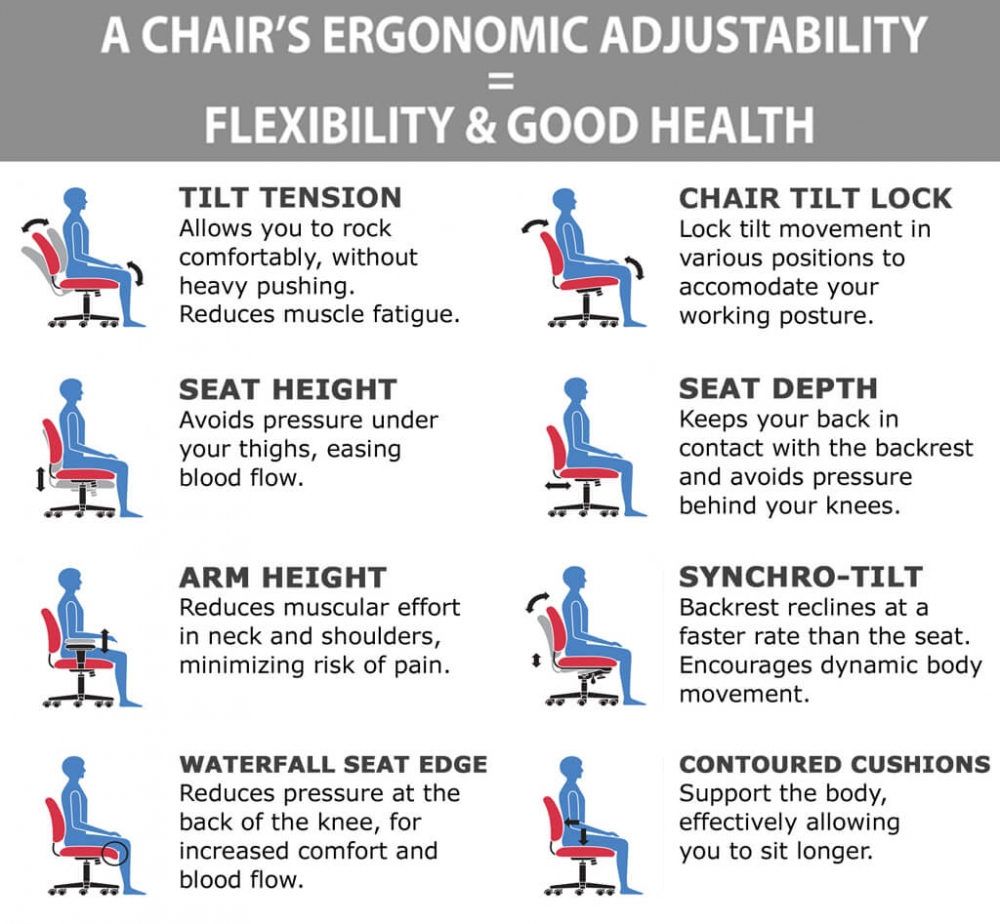 Executive office chairs ergonomic features