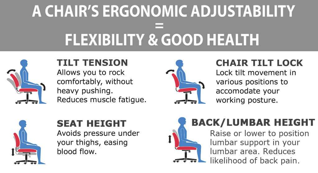 Lumbar support office chair ergonomics