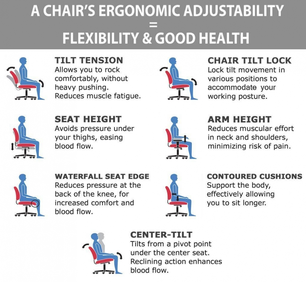 Stylish office chairs ergonomic features
